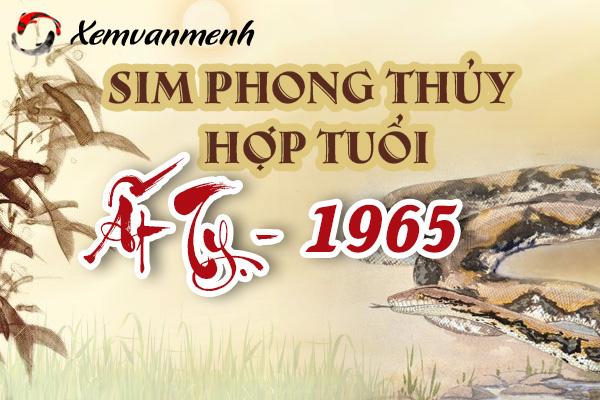 xem-sim-phong-thuy-hop-tuoi-at-ty-1965