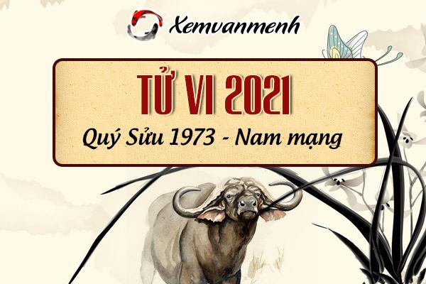 1973-xem-boi-tu-vi-tuoi-quy-suu-nam-mang