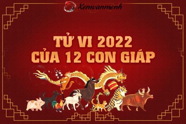 tu-vi-2022-cua-12-con-giap